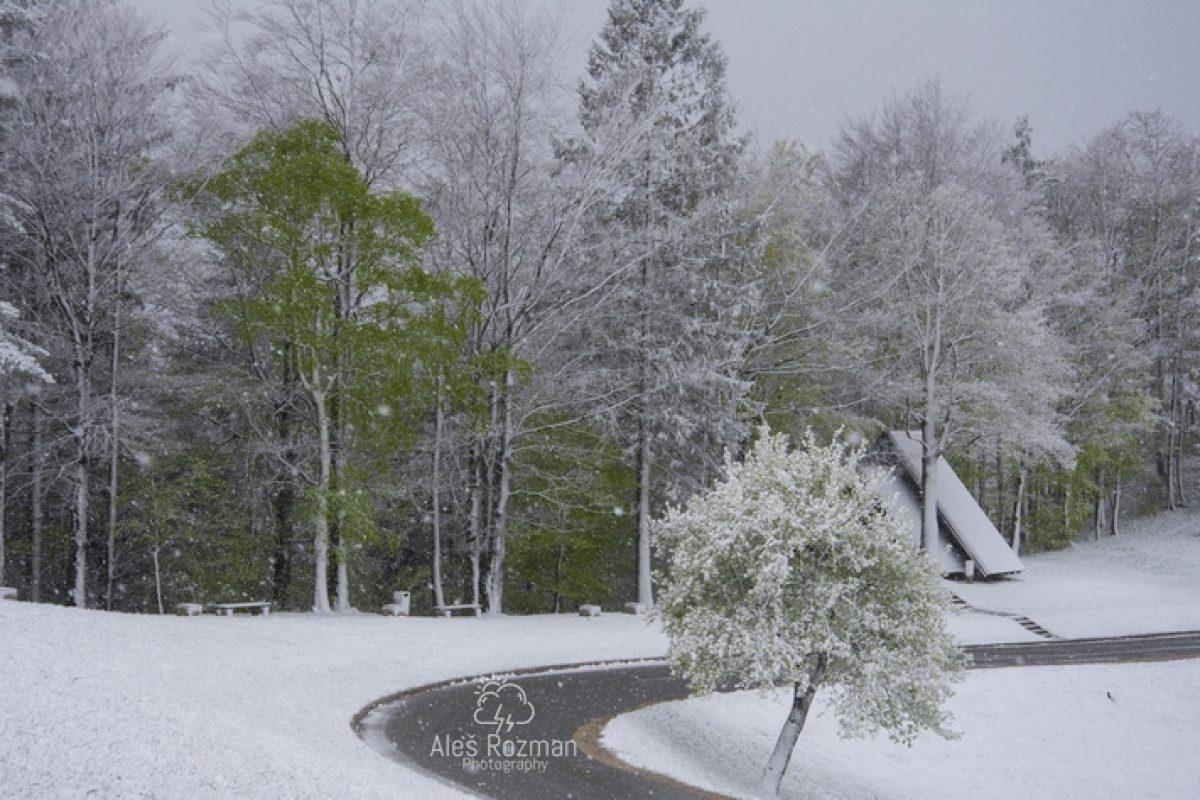 REPORTAŽA: Aprilski sneg na Graški Gori