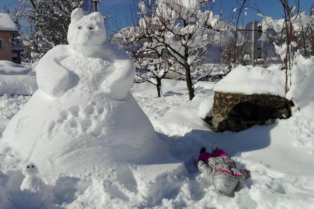 VREMENSKA NAPOVED: Koliko snega bo zapadlo in kakšne bodo razmere na cestah