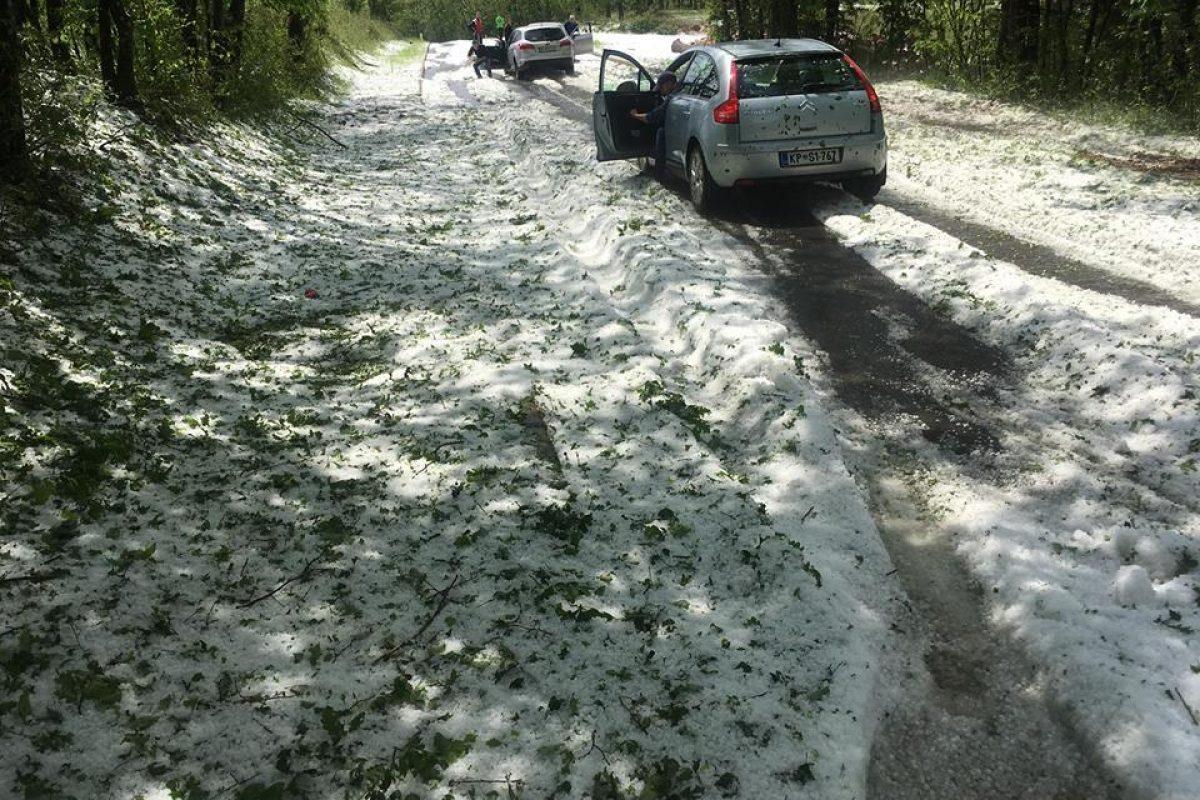 Močna nevihta s točo je v Brkinih nasula več centimetrov toče in uničila pridelke